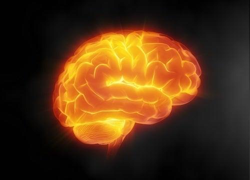 ασπίδα για τον εγκέφαλο