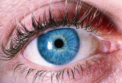Πώς να αντιληφθείτε τη νόσο Αλτσχάιμερ μέσω των ματιών