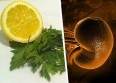 Εκτός από την αποτοξίνωση των νεφρών, το λεμόνι μαζί με τον μαϊντανό περιέχουν πολλές βιταμίνες και συνίστανται ιδιαίτερα για όσους υποφέρουν από αναιμία