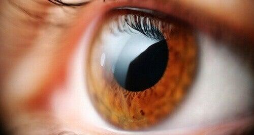 Διώξτε την κούραση από τα μάτια σας με αυτά τα κόλπα
