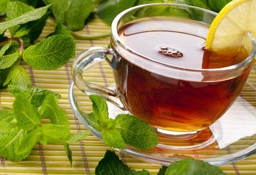 Φαρμακευτικά φυτά για τη θεραπεία του εντέρου σας