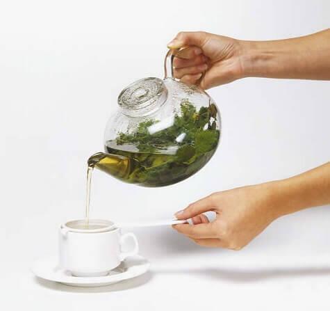 φυτά για το ουρικό οξύ και τσάι