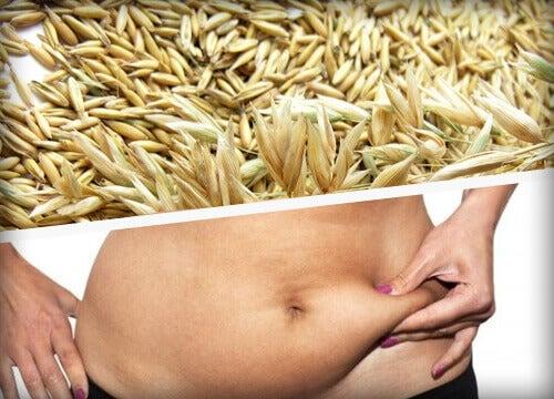 10 τροφές που καίνε το λίπος - δημητριακα