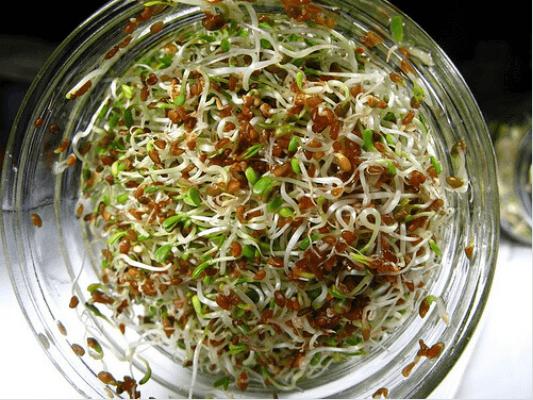 Πώς μαγειρεύονται σωστά τα λαχανικά: - Σπορόφυτα ψιλοκομμένα