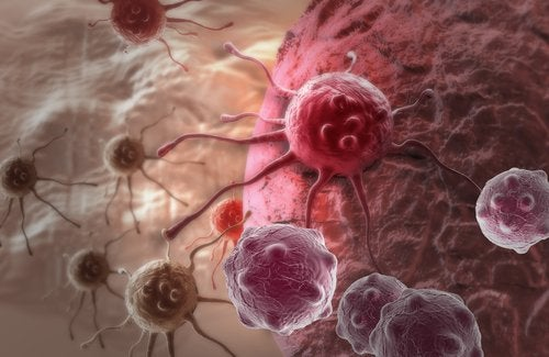 Κόβετε τη ζάχαρη - Καρκινικά κύτταρα