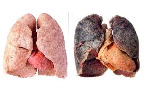 Συμβουλές για καθαρότερους πνεύμονες