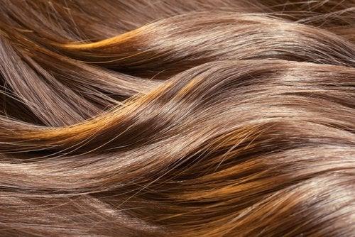 7 φυσικές θεραπείες για υγιή μαλλιά. Μάθετε περισσότερα