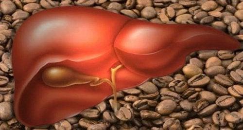 3 φλυτζάνια καφέ την ημέρα: είναι υγιεινό;