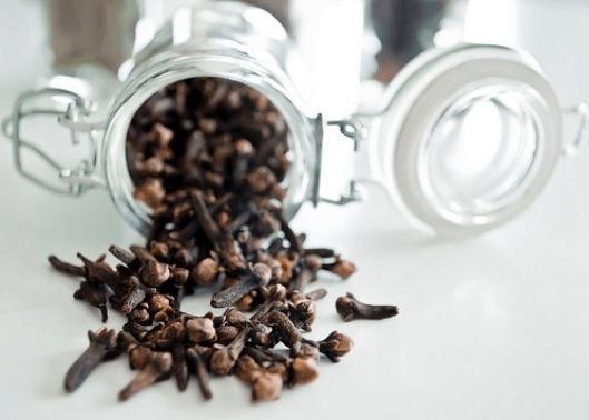 απομακρύνετε τις μύγες με γαρύφαλλο
