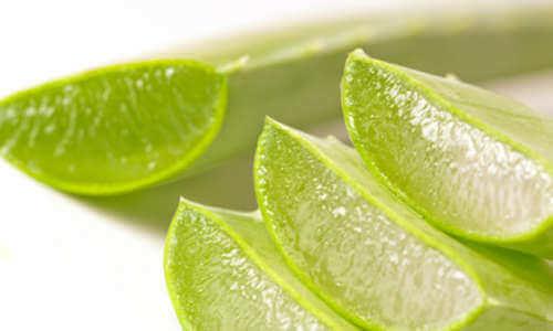 Μειώστε τον πόνο της αρθρίτιδας - Κομμένα φύλλα αλόης