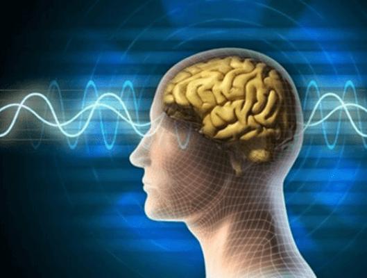 Οι 10 εντολές για νέο και υγιή εγκέφαλο. Ποιες είναι;