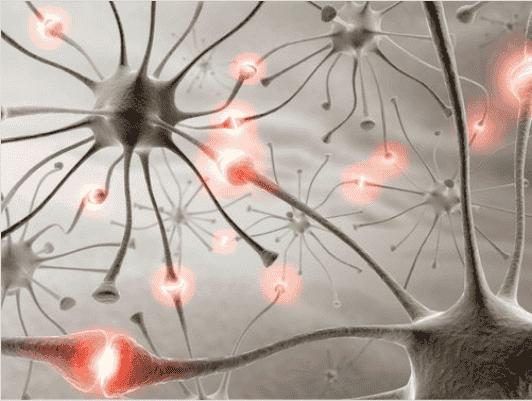 Το περπάτημα κάνει καλό στον εγκέφαλο