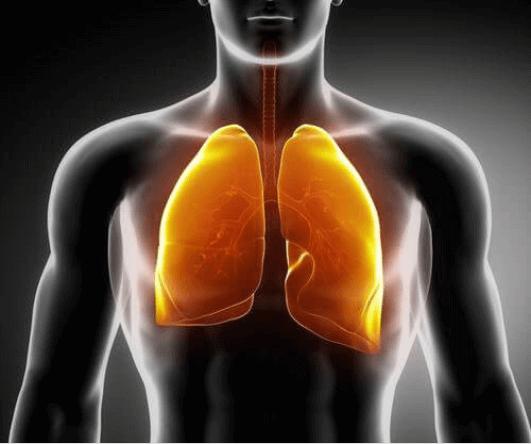 3 ροφήματα για την ενδυνάμωση των πνευμόνων