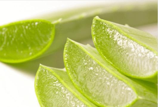 Βότανα που προσφέρουν ενέργεια - Κομμένα φύλλα αλόης