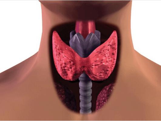 3 εύκολοι τρόποι για να αντιμετωπίσετε τον υποθυρεοειδισμό