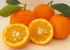 1-portokalia