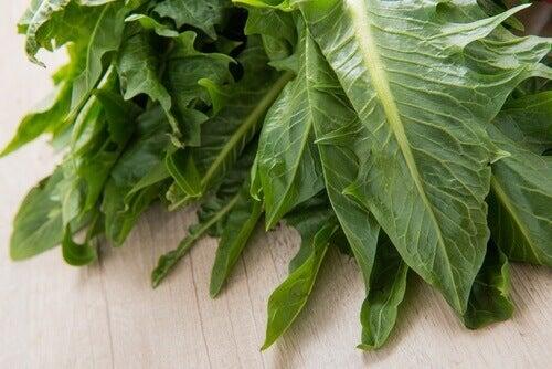 από τα καλύτερα φυτά για απώλεια βάρους