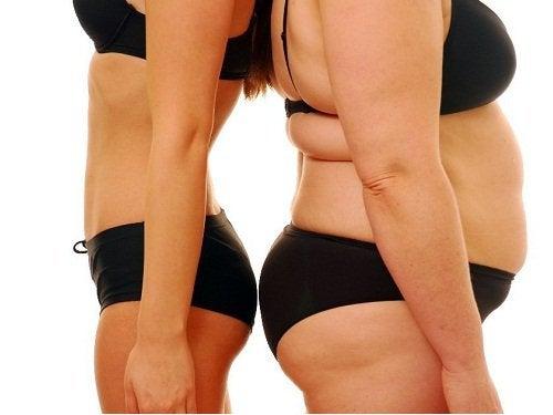 υγεία των ωοθηκών και παχυσαρκια