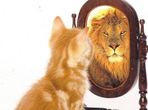 κατάθλιψη δεν θέλει να γνωρίζετε - αυτοπεποίθηση