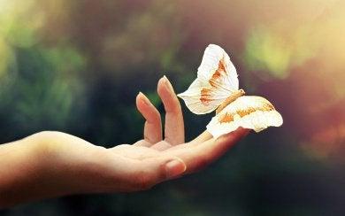 με υψηλή συναισθηματική νοημοσύνη - πεταλούδα