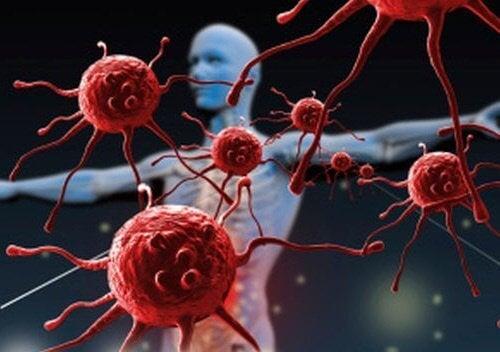 Τι καταστρέφει το ανοσοποιητικό σύστημα;