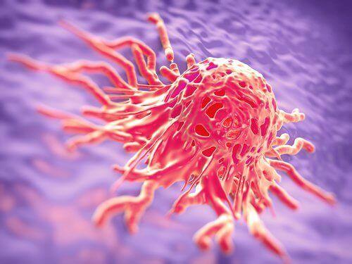της βρώμης- καρκινος