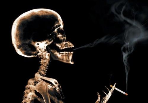 Κουκούτσια σταφυλιού - Ακτινογραφία ανθρώπου που καπνίζει