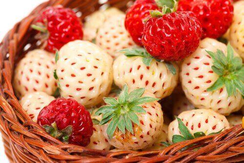 Άσπρες φράουλες - Άσπρες και κόκκινες φράουλες