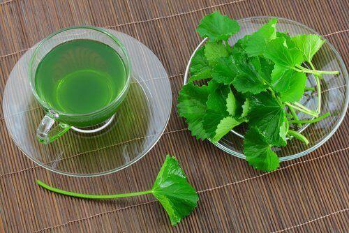 μαϊντανός, συστατικό σε φυσικά στοματικά διαλύματα
