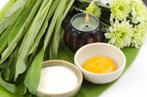 Αντιμετώπιση χαλάρωσης του στήθους - Μπολ με αβγό και μπολ με γιαούρτι