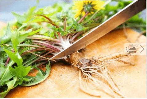 Βότανα για να προστατεύσετε το συκώτι σας - Ρίζα ραδικιού
