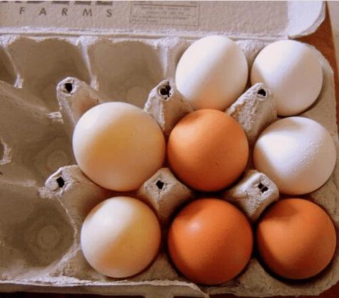 Χάρτινες αβγοθήκες - Φρέσκα αβγά