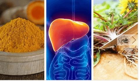 6 βότανα για να προστατεύσετε το συκώτι σας