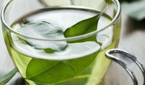 εξασφαλίστε την κολπική σας υγεία με αυτές τις 8 τροφές, πράσινο τσάι