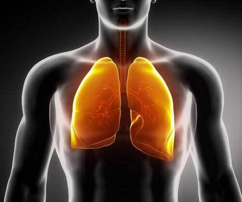 άπνοια ύπνου και πνευμονες
