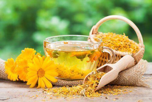 Πώς να σταματήσετε αμέσως τις ημικρανίες - Έγχυμα κατιφέ και άνθη