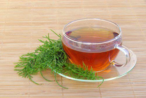 Φλιτζάνι με τσάι από εκουιζέτο