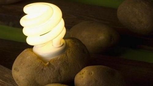 Μάθετε πώς να φτιάχνετε μια λάμπα από πατάτα