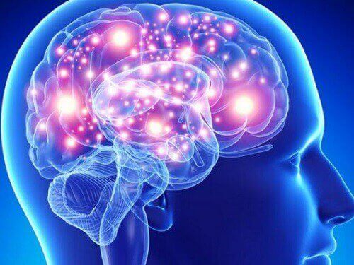 Ανθρώπινος εγκέφαλος