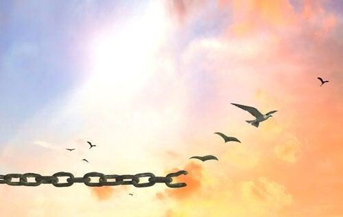 αλυσίδες και πουλιά
