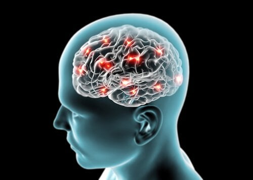 ωφέλειες της κανέλας - εγκεφαλική λειτουργία