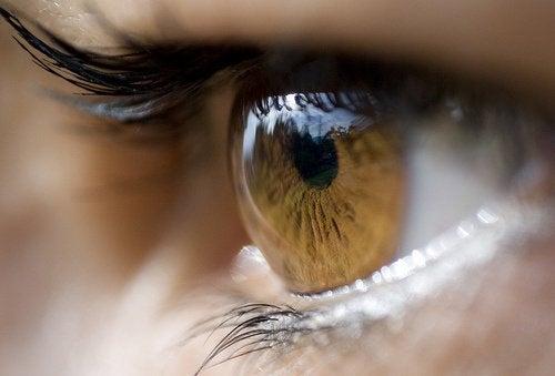 8 αποτελεσματικές θεραπείες για το κριθαράκι του ματιού