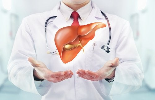 Τροφές που θα δυναμώσουν το συκώτι σας - Γιατρός και συκώτι
