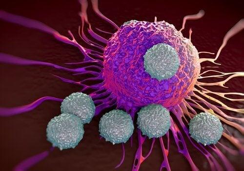 γουανάμπανα κατά του καρκίνου