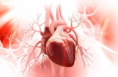 3 τρόποι να βελτιώσετε την υγεία της καρδιάς σας