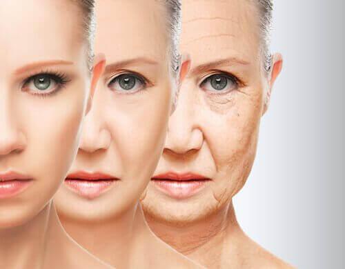 Αναπλήρωση του κολλαγόνου - Τα στάδια της γήρανσης του δέρματος