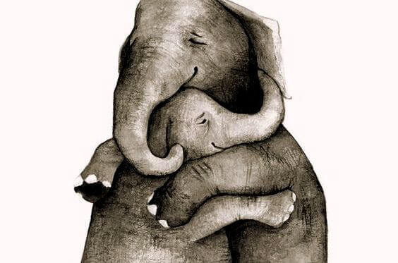 Αγκαλιασμένοι ελέφαντες συναισθηματικοί δεσμοί