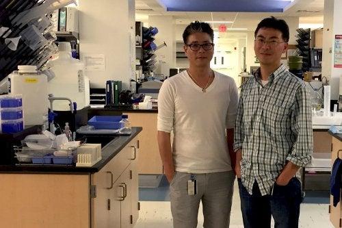 Επιστήμονες σε εργαστήριο