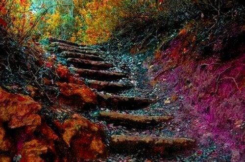 Η σκάλα της ζωής: πέντε βήματα για καθημερινή αυτοβελτίωση