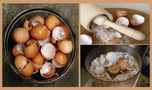 Ανακαλύψτε 6 ενδιαφέρουσες φυσικές θεραπείες με τσόφλια αβγού